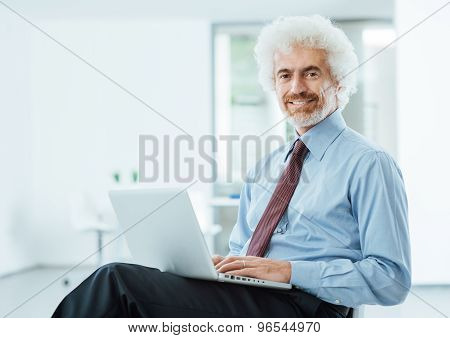 Smiling Businessman Working On A Laptop
