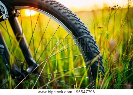 Bicycle Wheel In The Summer Green Grass Meadow Field