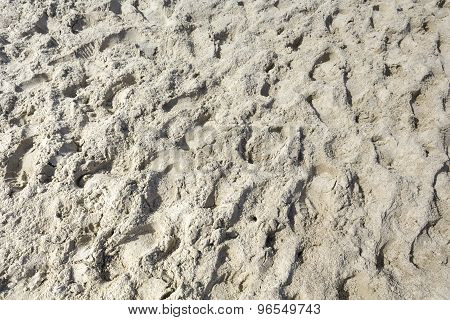 Beach Sand In The Summer Time