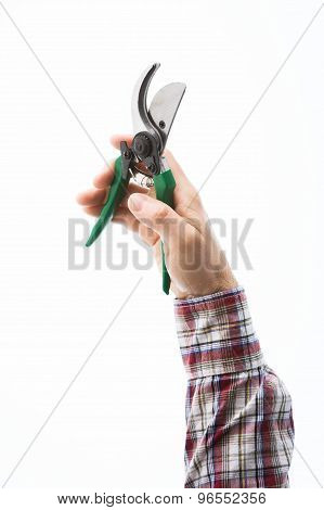 Hand Holding Pruning Shears