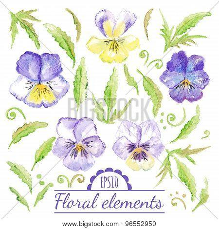 Vector Watercolor Floral Elements.
