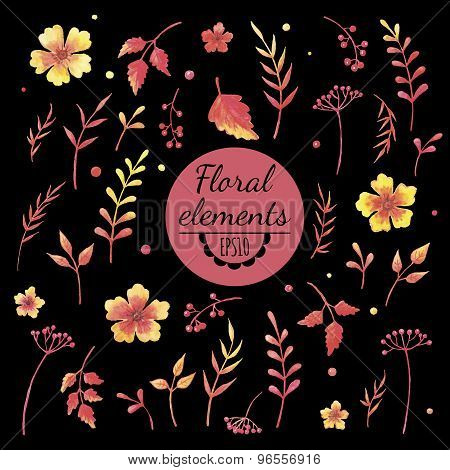 Vector Watercolor Floral Elements On Black Background