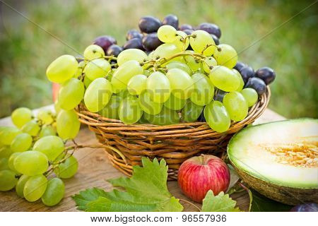 White and red grapes (seasonal fruits)