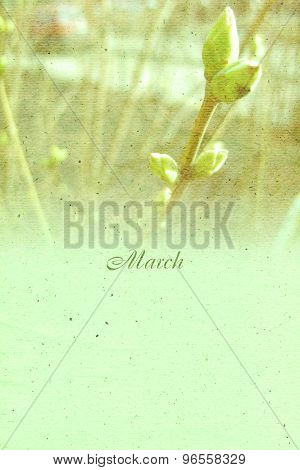 Stylized Vintage Background For Calendar Month. March
