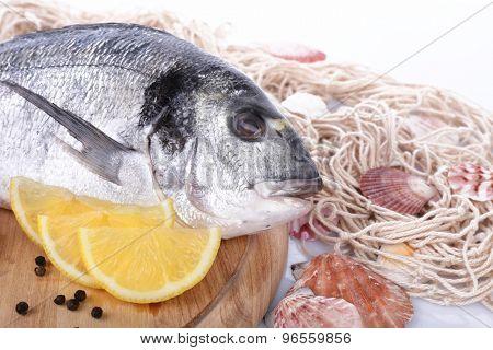 Fresh dorado fish and lemon on wooden cutting board, closeup