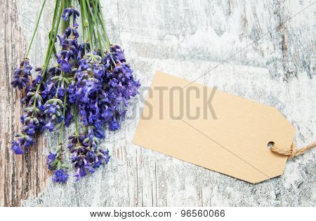Lavender With Tag