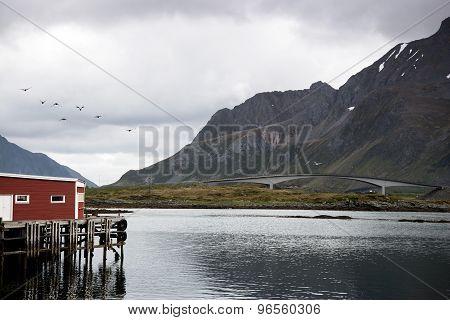 camping - Lofoten Islands, Norway
