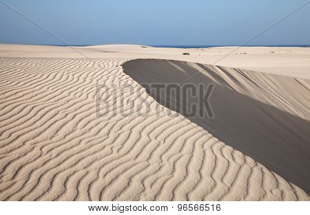 Fuerteventura, Canary Islands, Dunes Of Corralejo