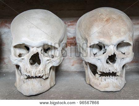 Human Skulls Inside A Catacomb