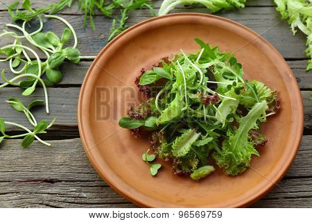 Plate of fresh mixed green salad on wooden table close up
