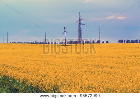 Power Line Among The Fields