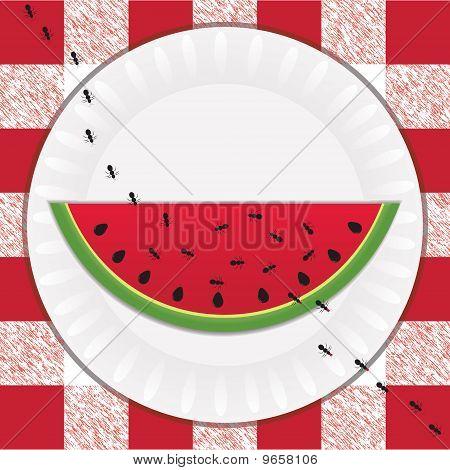 Ants & Watermelon