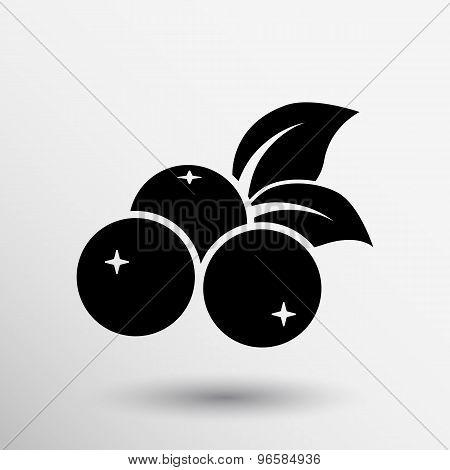 blueberry farm juicy illustration logo symbol vector