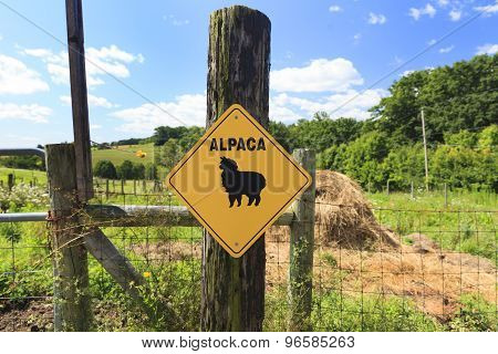 Alpaca Crossing