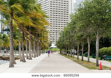 Urban city architecture. Miami downtown in the day