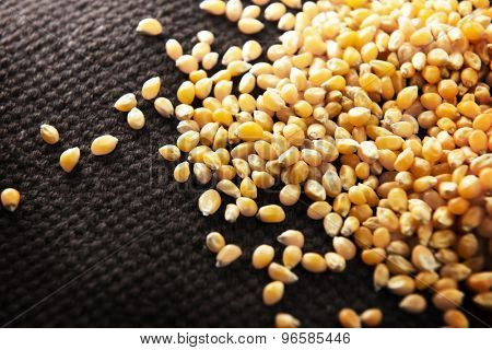 Dried corn kernels on woven primitive cloth. Shallow depth of field.