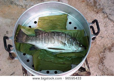 Steam Sea Bass Fish