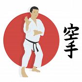 picture of karate  - The man shows karate an illustration - JPG