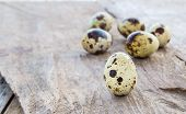 foto of quail  - Close up Quail eggs on a wooden table background - JPG