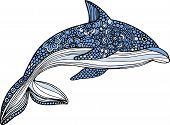pic of dolphins  - vector hand drawn dolphin illustration with doodle ornaments - JPG