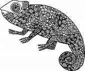 picture of chameleon  - Hand drawn doodle chameleon illustration decorated with ornaments - JPG