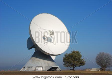 Satellite Dish With Trees