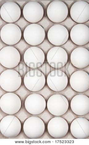 white eggs isolated on white