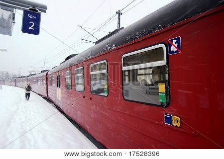 A train at Ljan train station, in Oslo, Norway.