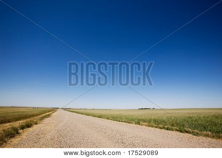 A prairie gavel road stretching off into the distance with no end in site.