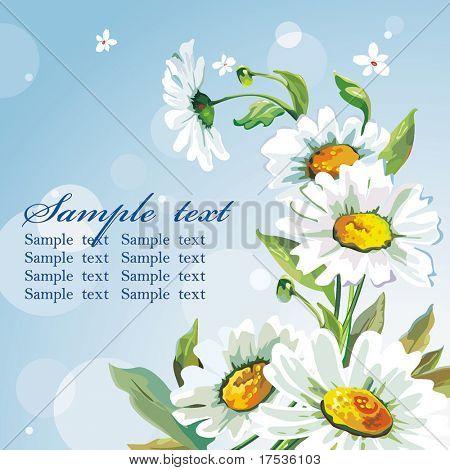 White daisywheels on blue background. Floral vintage wallpaper.