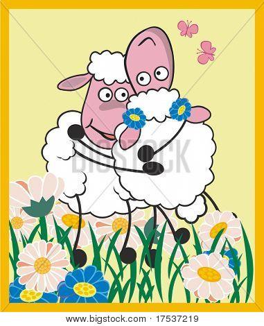 sheep hug