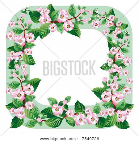 Vector border with of a blooming sprig of apple