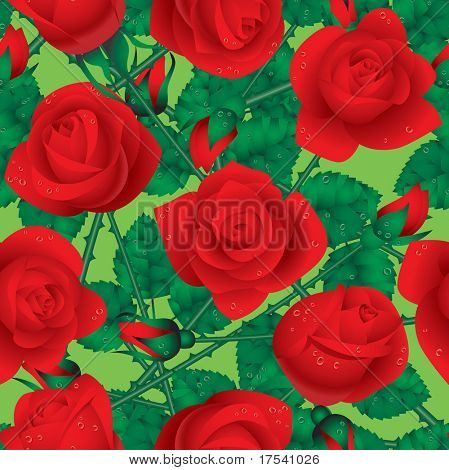 Vector seamless rose background