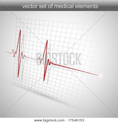 heart beats cardiogram vector illustration