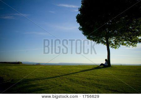 Mujer bajo el árbol