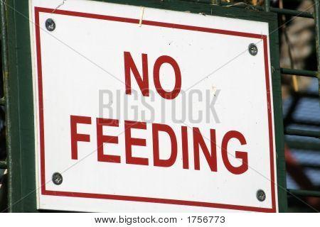 Feeding Forbidden