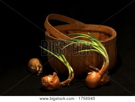 Three Onions And A Basket