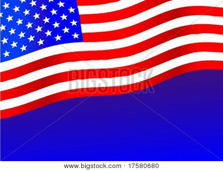 The American Flag (vector)