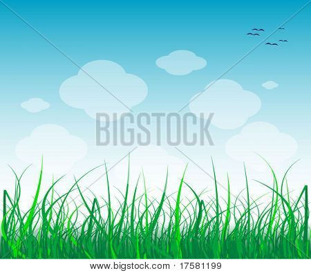 GRASS (vector)