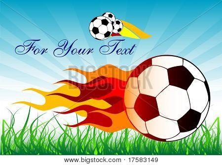 Soccer balls and grass