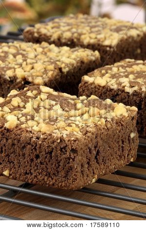 Chocolate Brownies With Cracked Peanuts On Top
