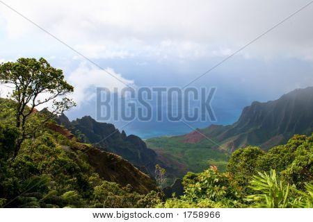 Kauai Scenic
