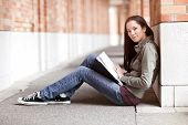 image of american indian  - A shot of an ethnic college student studying on campus - JPG