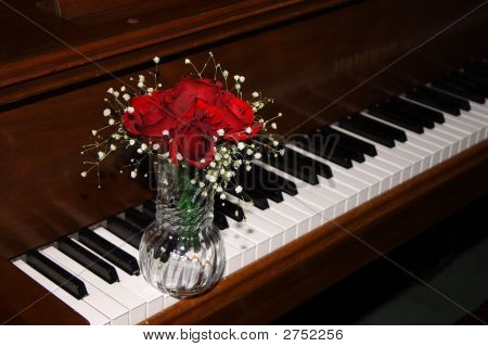 Roses And A Piano