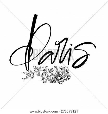 Paris Calligraphy Incription Modern Brush