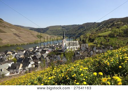 small village of Briedel on the Mosel river
