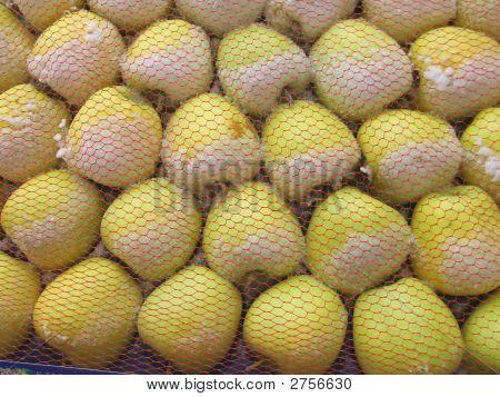 Snowy Golden Apples