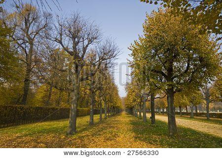 Charlottenburg Palace's Park