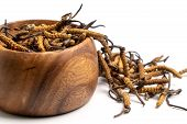 Close Up Cordycep Sinensis (chong Cao) Or Mushroom Cordyceps On Wooden Bowl On Isolated Background.  poster