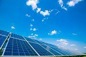 Solar Panels. Power Station. Blue Solar Panels. Alternative Source Of Electricity. Solar Farm. poster